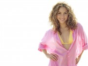 100 Shakira Wallpapers 7deea3107972727