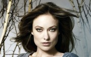 Olivia Wilde HQ wallpapers C71f19107974990