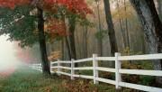 Beautiful Nature Wallpapers - Part 2 E48b9b108362477